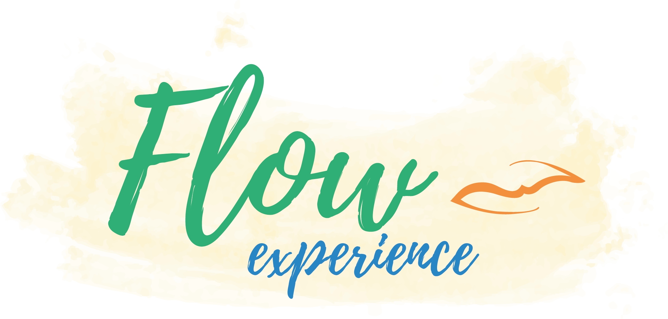Flow Experience